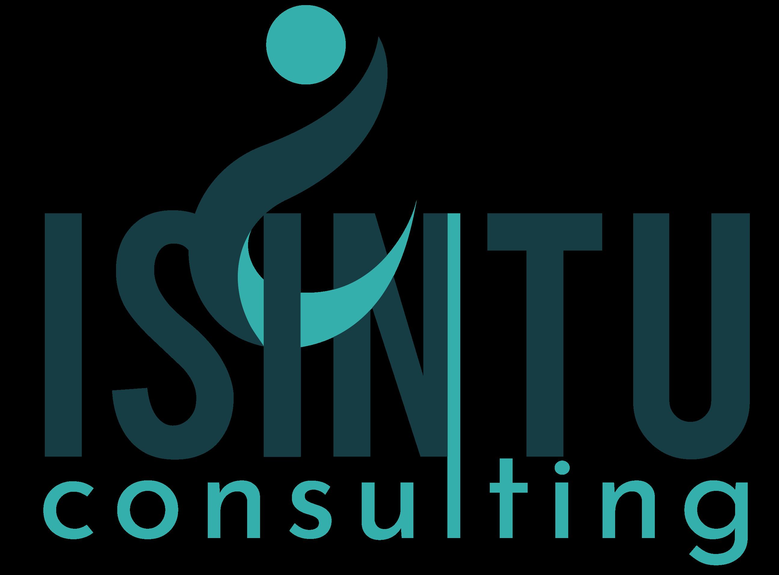 Isintu Consulting